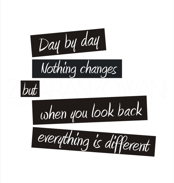 day_by_day_nothing_changes_but_when_you_look_bak_everything_is_different